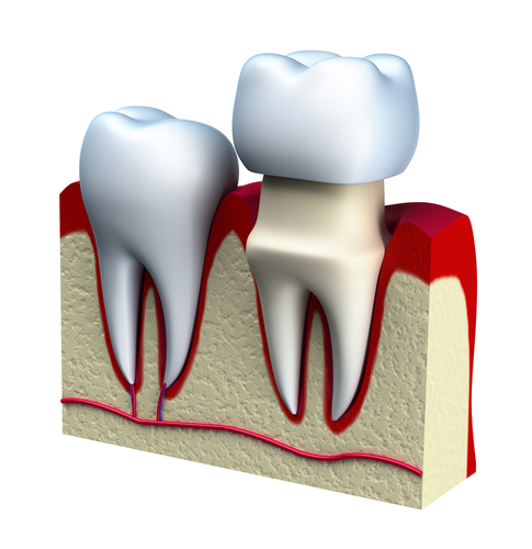 why i want to be a dentist Although becoming a dentist requires many years of education, this  after you  finish dental school, you may decide that you want to do something more.